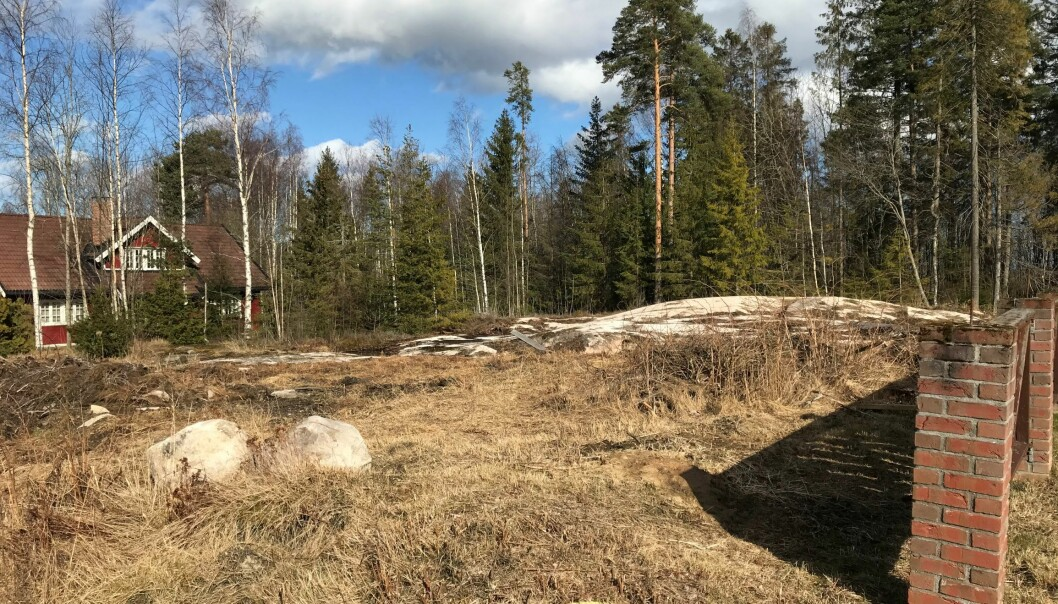 Mot øst er det bare skog, og ingen naboer (foto: Ronny Thomassen).