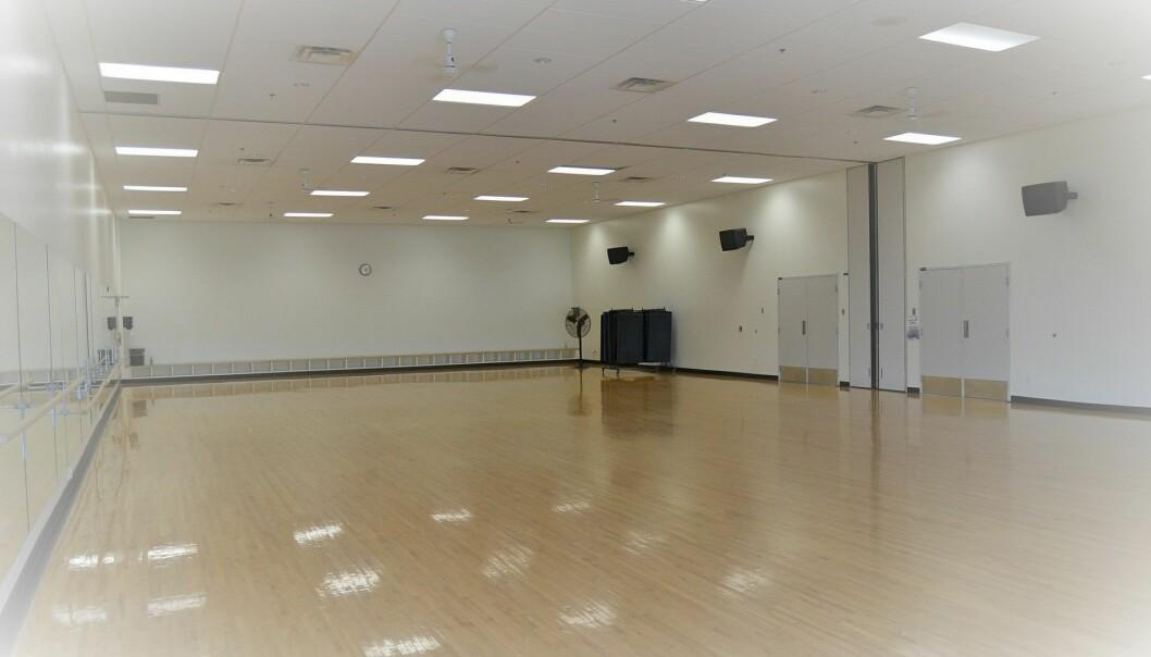 Idrettshaller kan bli legevakt.