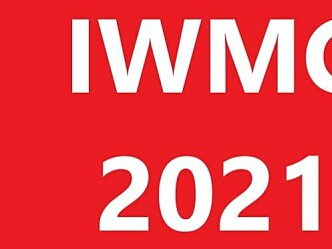 International Water Mist Conference 2021