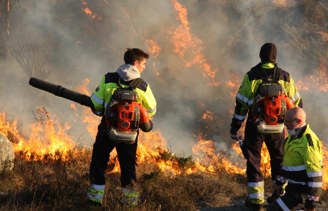 Lyngbrennere og brannvesenet samarbeidet om å kontrollere Hetlandsbrannen ved hjelp av motbrann, i april 2019.
