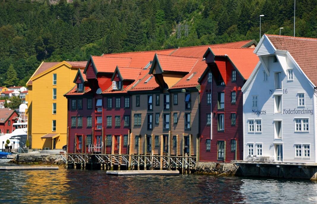 Kommunal- og moderniseringsdepartementet påpeker at Norge har bygget med tre i flere hundre år, og det er ingenting i denne saken som tilsier at vi ikke skal fortsette med det.